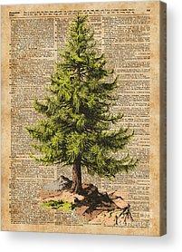 Encyclopedia Acrylic Prints