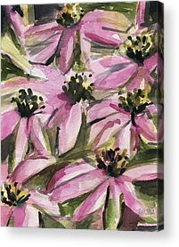 Abstracted Coneflowers Acrylic Prints