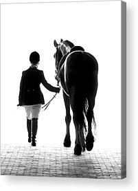 Black And White Horse Acrylic Prints