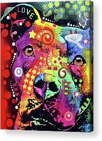 Bulls Acrylic Prints