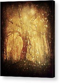 Dark Magic Acrylic Prints