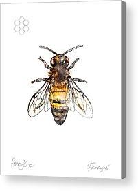 Honeybee Acrylic Prints