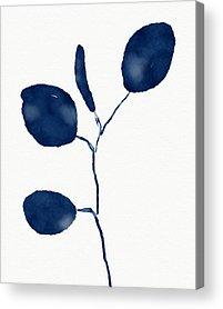 Eucalyptus Acrylic Prints