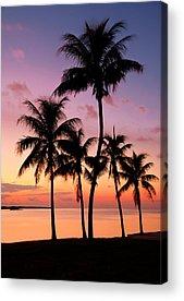 Island Acrylic Prints