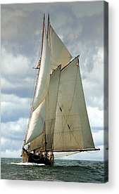 Sailboats Acrylic Prints