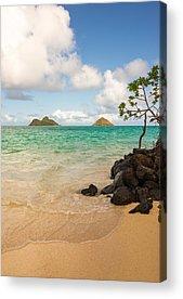 Oahu Acrylic Prints