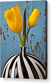 Yellow Flower Acrylic Prints