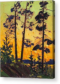 Designs Similar to Pine Trees At Sunset