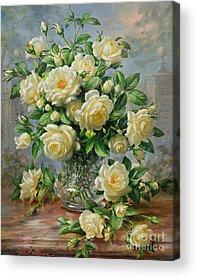 Yellow Rose Acrylic Prints