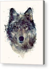 Creatures Acrylic Prints