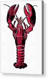 Maine Coast Drawings Acrylic Prints
