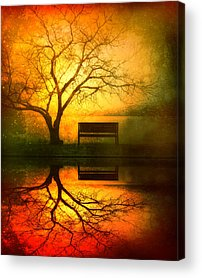 Reflection Acrylic Prints