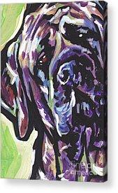 Mastiff Acrylic Prints