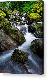 Mount Rainier Acrylic Prints