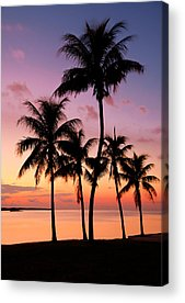 Tropical Acrylic Prints