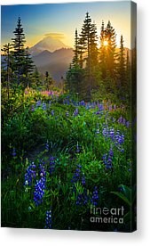 Rainier Acrylic Prints