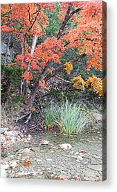 Lost River State Park Acrylic Prints