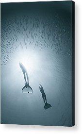 Mermaids Acrylic Prints