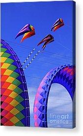 Kite Festival Acrylic Prints