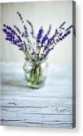 Herbs Acrylic Prints