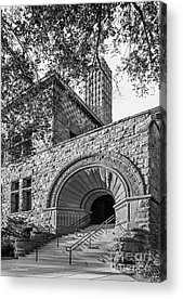 University Of Minnesota Acrylic Prints