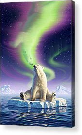 Polar Acrylic Prints