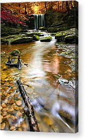 Creek Acrylic Prints