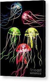 Undersea Acrylic Prints