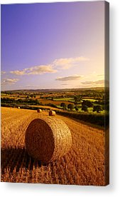 Haybales Photographs Acrylic Prints