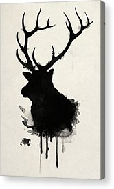 Wild Animals Acrylic Prints