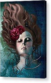 Woman Bondage Acrylic Prints