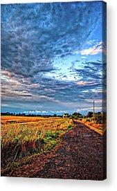 Driveway Acrylic Prints