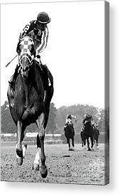 Kentucky Horse Park Mixed Media Acrylic Prints