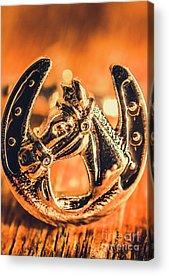 The Horseshoe Acrylic Prints