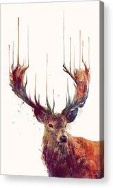 Buck Deer Acrylic Prints