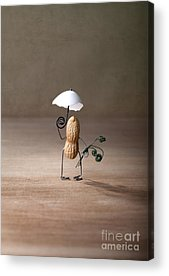 Peanut Acrylic Prints