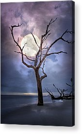 Moonshine On The Beach Acrylic Prints