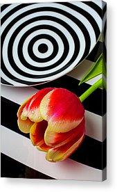 Dotd Acrylic Prints
