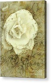 Brown Toned Photographs Acrylic Prints
