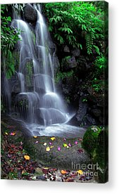 Beautiful Scenery Acrylic Prints