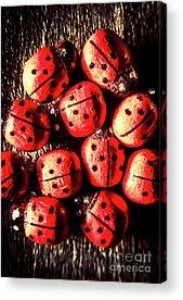 Lady Bug Acrylic Prints