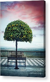 Andalusian Acrylic Prints