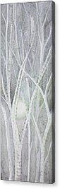 Leafless Tree Acrylic Prints