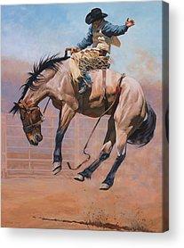 Saddle Acrylic Prints