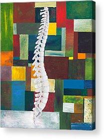 Anatomical Acrylic Prints