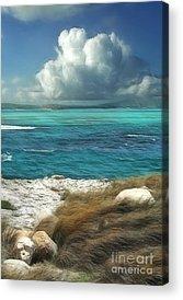 Caribbean Sea Acrylic Prints