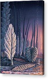 Biota Photographs Acrylic Prints