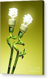 Environmental Acrylic Prints