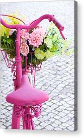 Spring Scenes Photographs Acrylic Prints