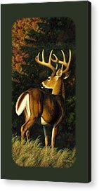 Trophy Buck Acrylic Prints